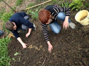 Tous au Jardin partagé de l'Écume du jour @ Jardin partagé de l'Écume du Jour | Beauvais | Nord-Pas-de-Calais Picardie | France